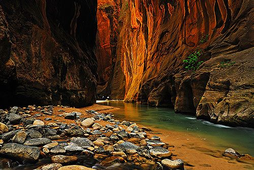 Virgin River Kayaking Zion Narrows 119