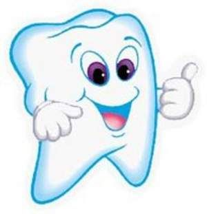 Resultado de imagen para dientes