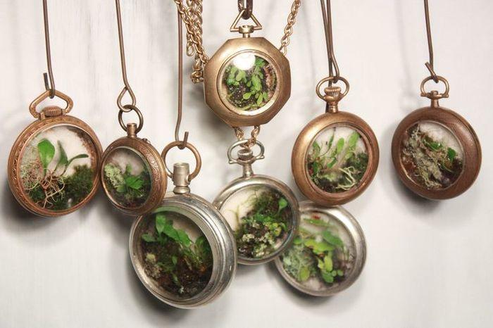 懐中時計のようなアンティーク感のあるテラリウム。ちょっとしたプレゼントにも良さそうですね!