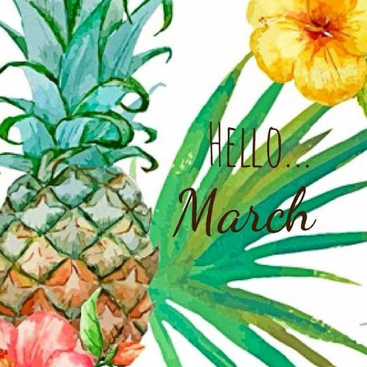 Hello March.. .#hellomarch I have big plans for you #montegobay #atlanta #newyork #miami #boston #dallas #minneapolis #chicago #seattle #losangeles #losvagos #houston #philly #toronto #canada #london #foreverliving #foreverlivingproducts #france #portugal #germany #japan #australia #newzealand #portugal #sweden #francer