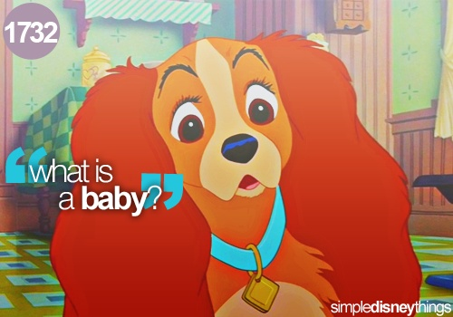 1000+ Images About Disney Lady And The Tramp On Pinterest