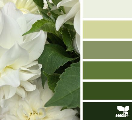 Flora Tones - http://design-seeds.com/index.php/home/entry/flora-tones49