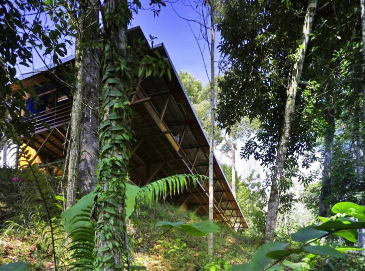 Shelter@Rainforest: Self-Sufficient Net Zero Longhouse Supports Sustainable Reforestation in Malaysia