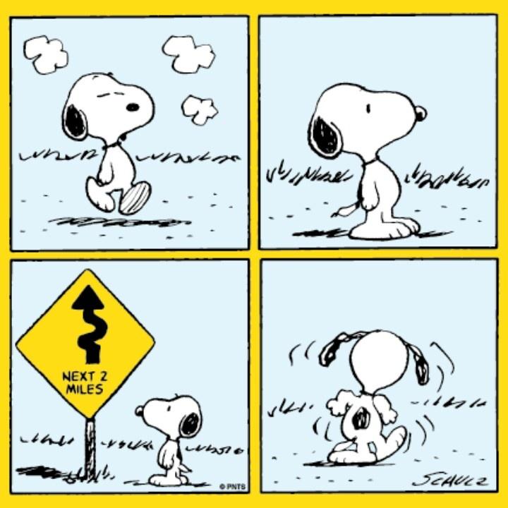 210 best Peanuts! images on Pinterest   Comic, Peanuts comics und ...