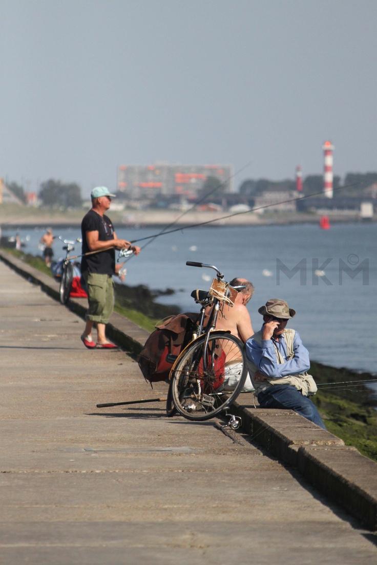Fishing man, Hoek van Holland