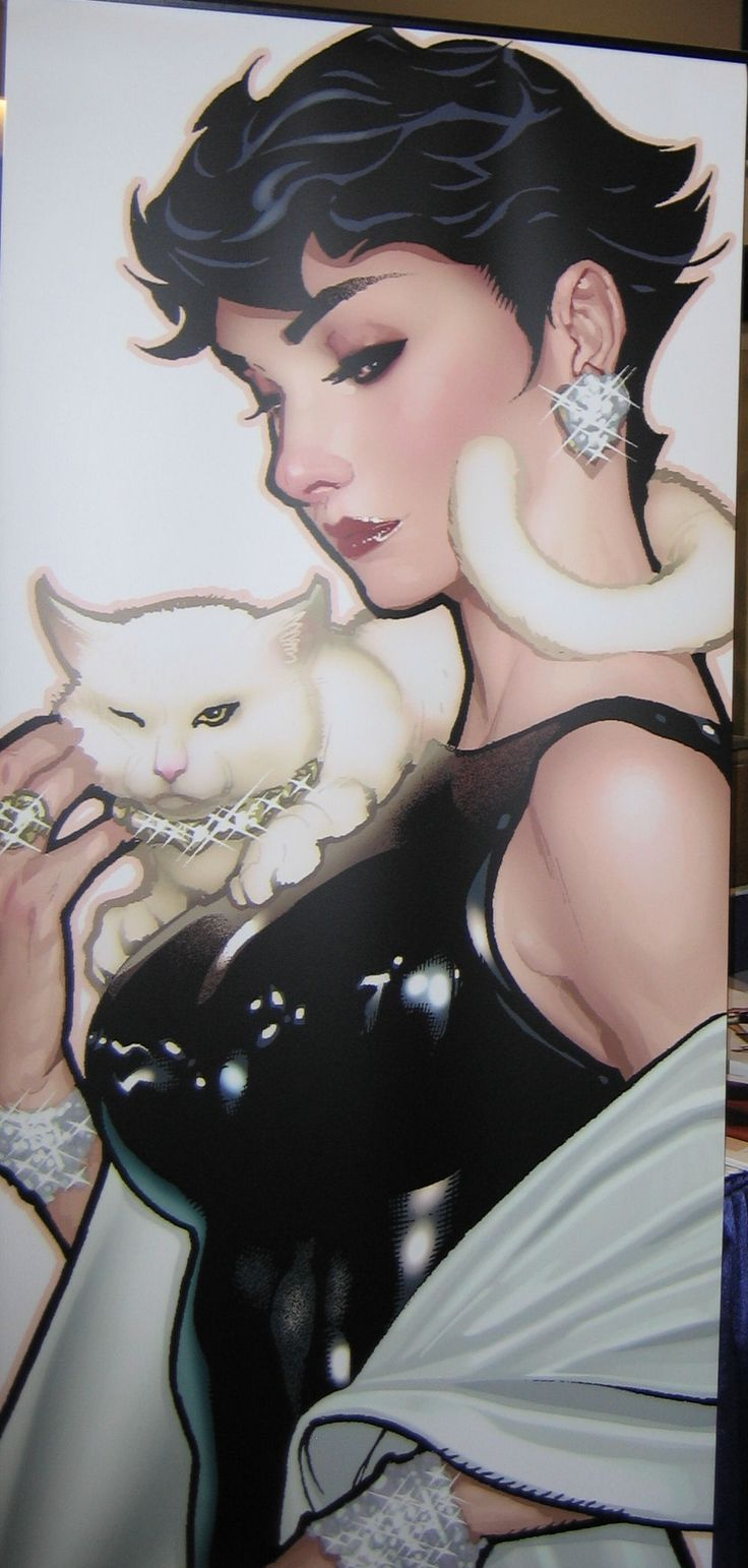 Selina Kyle/Catwoman | Adam Hughes