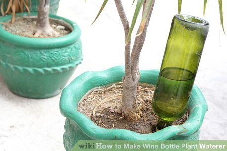 Image titled Make Wine Bottle Plant Waterer Step 8