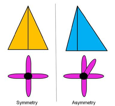 18 Best Images About Symmetry Examples On Pinterest