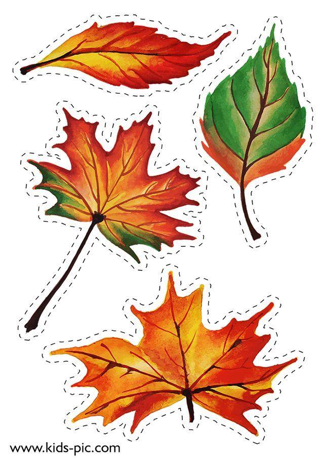 Картинки осенних листьев для вырезания цветные