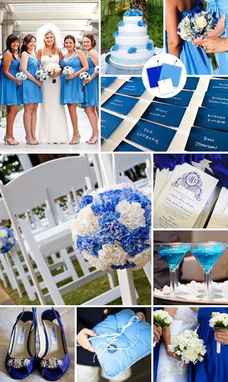 Blue hydrangea mixed with white