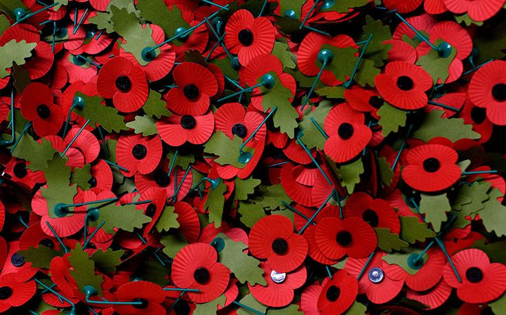 Some facts and figures you may not know about the Remembrance Day poppy