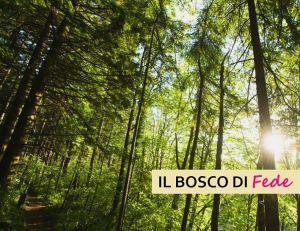 Il Bosco di Fede