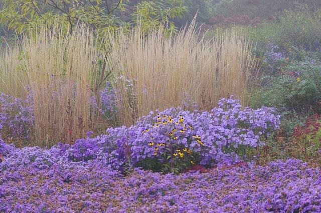 autumn at Hermannshof, a public experimental garden, Weinheim, Germany