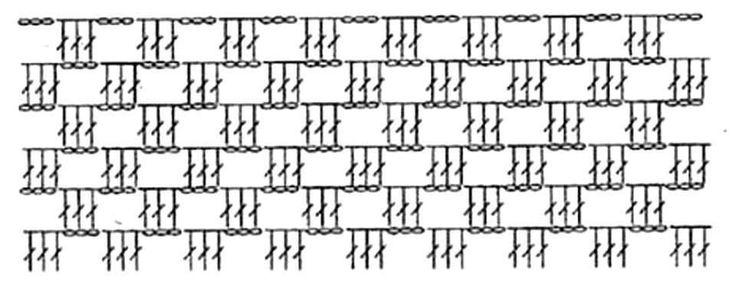 Esta blusa es super fácil. Materiales Necesitamos hilo 400 grs (mas o menos, según el talle) Aguja de crochet gruesa. Punto fantasía: 3 varetas. 2 cadenas PUEDEN SER 2 CADENAS O 3 SEGÚN EL HILADO QUE USEN  Espalda y delantera se tejen iguales Con la medida de B comenzamos haciendo 4 cms de medio-punto. …