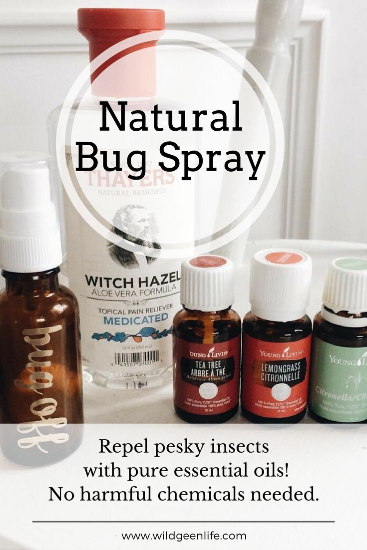 Natural Bug Spray with Young Living Essential oils! Click through for the recipe, or pin to save for later!