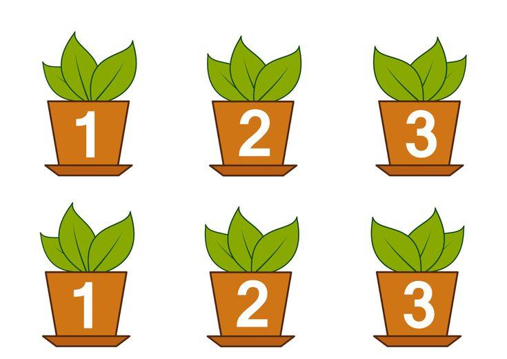 Конспект игрового занятия «Комнатные растения»