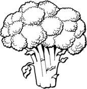 Grönsaker - målarbilder - Gratis utskrivningsbara bilder