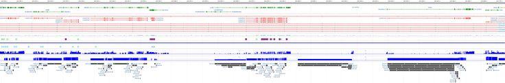 L1CAM L1 cell adhesion molecule [Homo sapiens (human)] - Gene - NCBI
