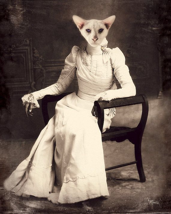 """Кошка Картина, сиамская, готический, гот Декор, викторианской Животные, стимпанк, Коллаж, антропоморфный, Жуткий, """"Белый"""