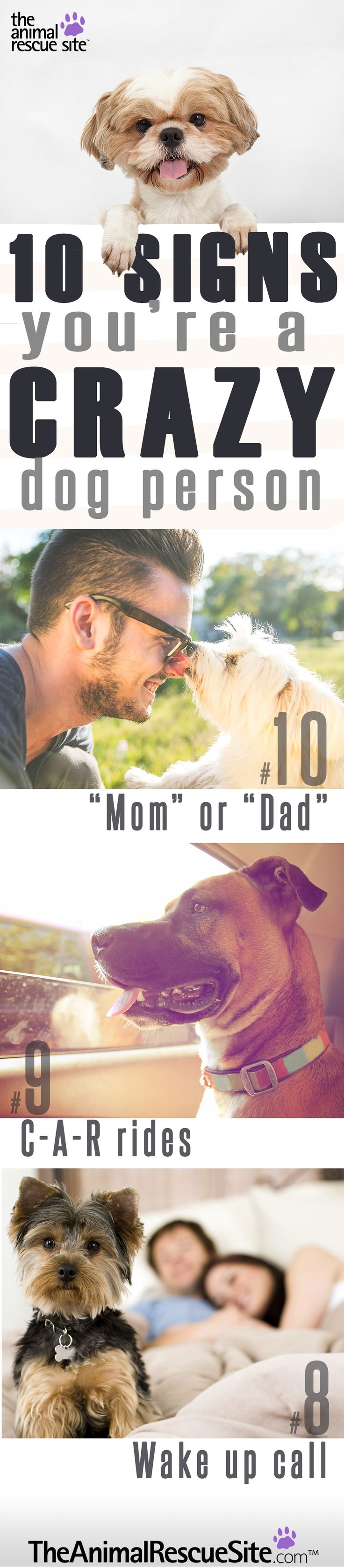 """Here are 10 easy ways to tell if you (proudly) fit the mold of a """"Crazy Dog Person"""" #TheAnimalRecueSite"""