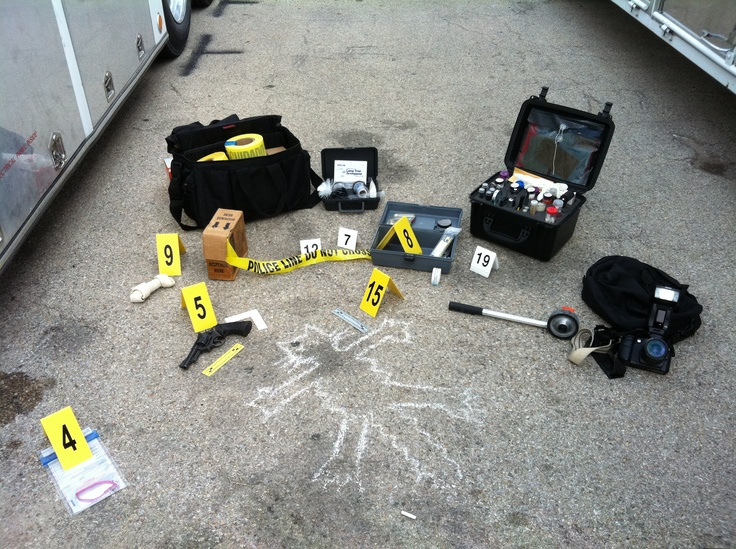 types of evidence in crime scenes Crime scene processing:  biological evidence the identification of various biological samples at a scene can be significant  certain types of dna evidence are.