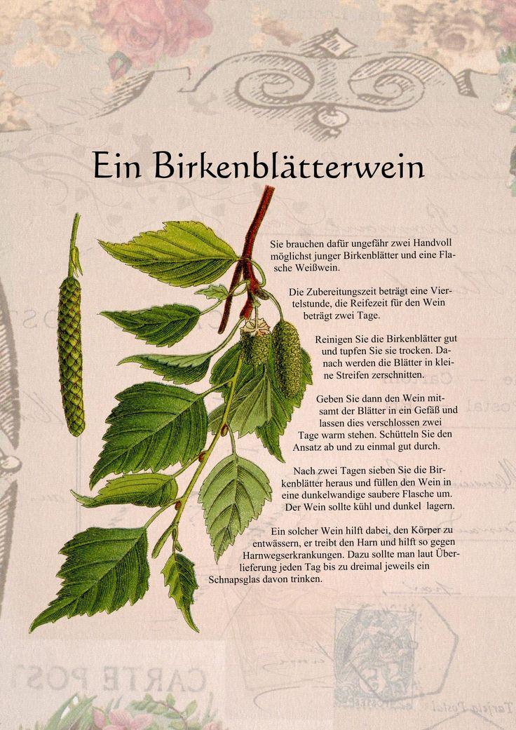 Die 25+ Besten Ideen Zu Kräutertees Auf Pinterest | Tee, Heiße Tee ... Garten Pflanzen Trockenen Regionen Tipps Sparen