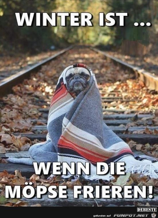 lustiges Bild 'Winter.jpg'- Eine von 26426 Dateien in der Kategorie 'witzige Bilder' auf FUNPOT.