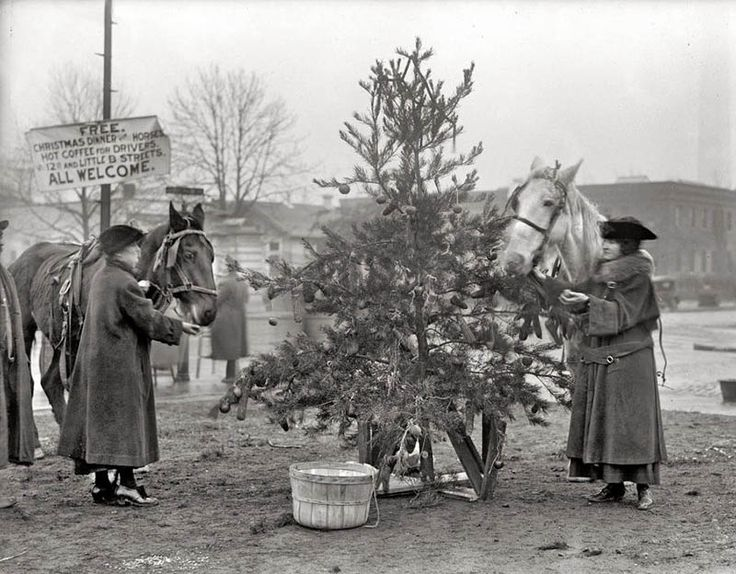 27 best WWI Christmas images on Pinterest Wwi, American girls and