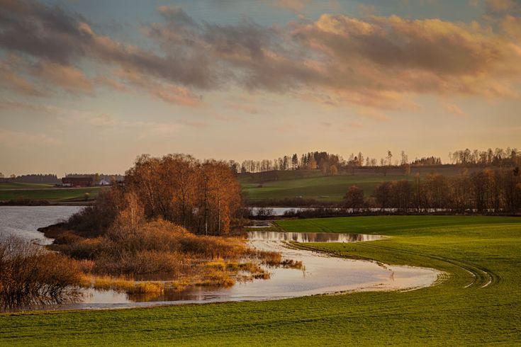 Autumn by the Østensjø lake in Ås. Photo: John Einar Sandvand