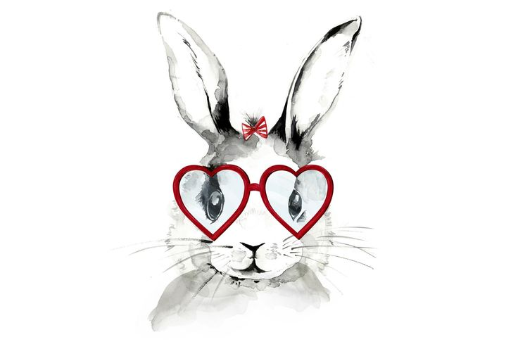 Picture-Bunny In Spectacles