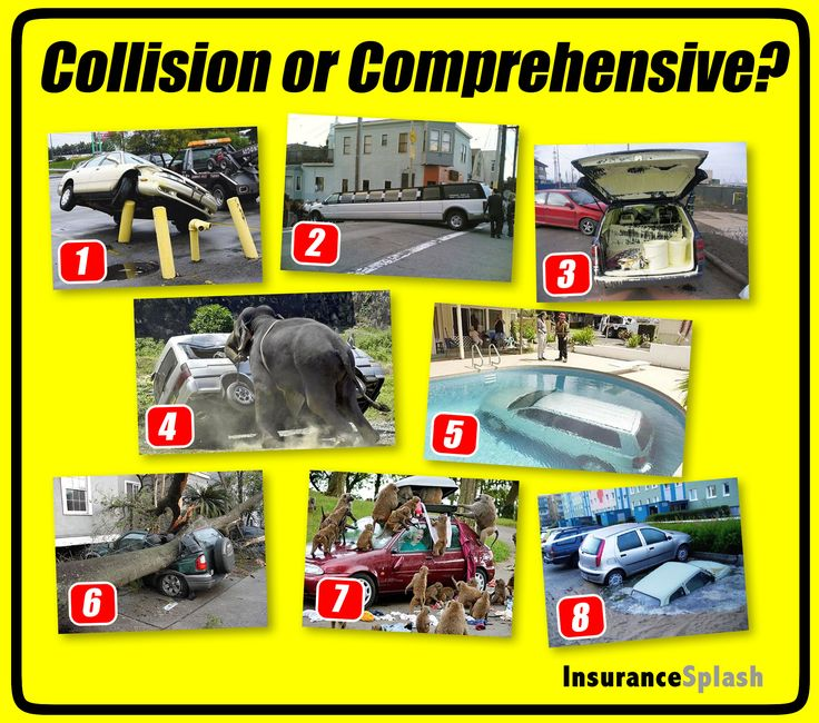 Young Person Car Insurance Quotes: Collision Or Comprehensive Insurance Coverage? You Make
