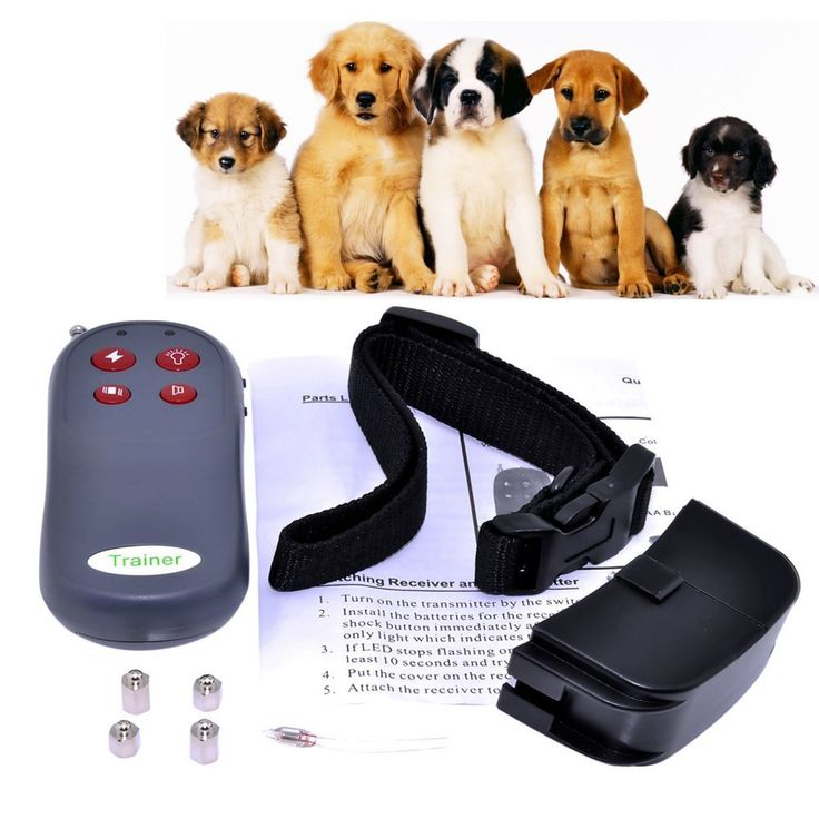 MuchBuy 4 In 1 Remote Small/Med Dog Training Shock Vibrate Collar Trainer Safe For Pets,Electric Shock and Vibration ** Want additional info? Click on the image. (This is an affiliate link and I receive a commission for the sales)