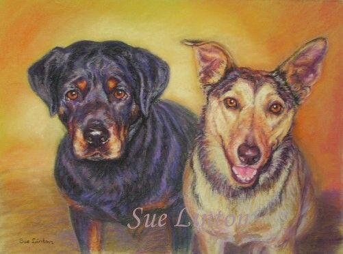 A Pastel memorial pet portrait of Brutus & Pippa - Brutus (LHS) had passed away.