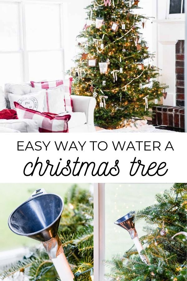 Easy Way To Water A Christmas Tree Old Salt Farm Diy Christmas Tree Ornaments Holiday Christmas Tree Diy Christmas Tree
