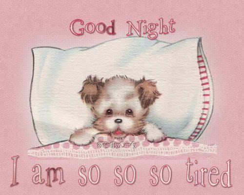 Cute Good Night Quotes   Goodnight sweet Rachel xx - Friendship Photo (14099320) - Fanpop ...