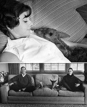 "70 best Audrey Hepburn ""Green Mansions"" 1958 images on ..."
