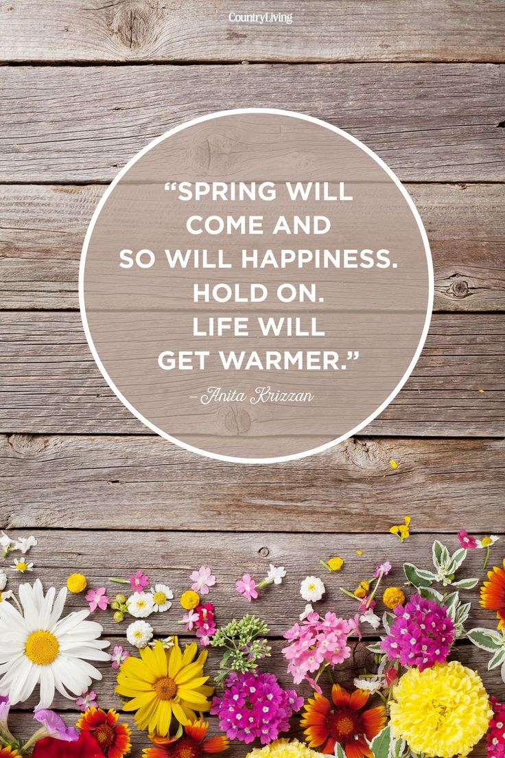 20 Beautiful Spring Quotes That Will Make You Smile 20 Beautiful Spring Quotes That Will Make You Smile
