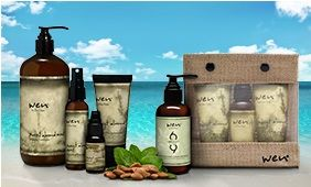 WEN® Hair Care | Hair Care Products | WEN® by Chaz Dean Official Site  (Kinda thinking about ordering this...)