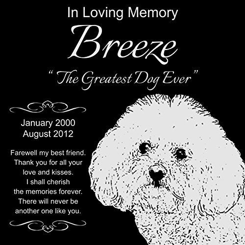 """Personalized Bichon Frise Pet Memorial 12""""x12"""" Engraved Black Granite Grave Marker Head Stone Plaque BRE1 * Check this useful article by going to the link at the image. #DogMemorials"""