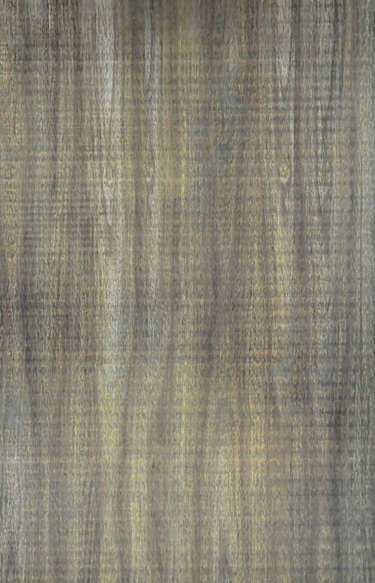 Natural Palm Veneers : : Olive Palm