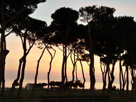 #Alba sul mare #pineto #abruzzo #italy
