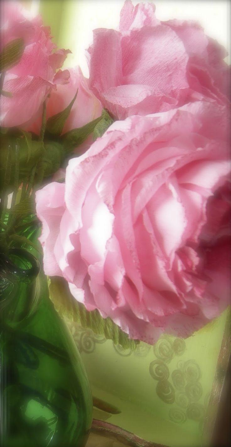 Le rose di Mari