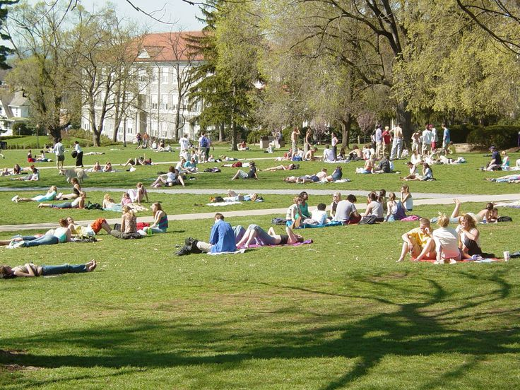 best jmu campus map ideas college packing lists james madison university students on the quad