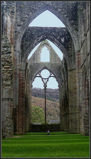 Tintern Abbey in south Wales was dissolved by Henry VIII.  The Abbey is 881 years old.
