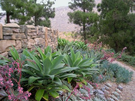 Above Or Below Walls, On Slopes. Find This Pin And More On Low Water Garden  Design ...