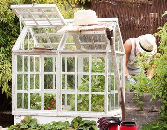 Växthus som passar perfekt till en pallkrage på 80 x 60 cm. Spröjsade fönster, takluckor - ett växthus i vitt shabby chic från Affari.