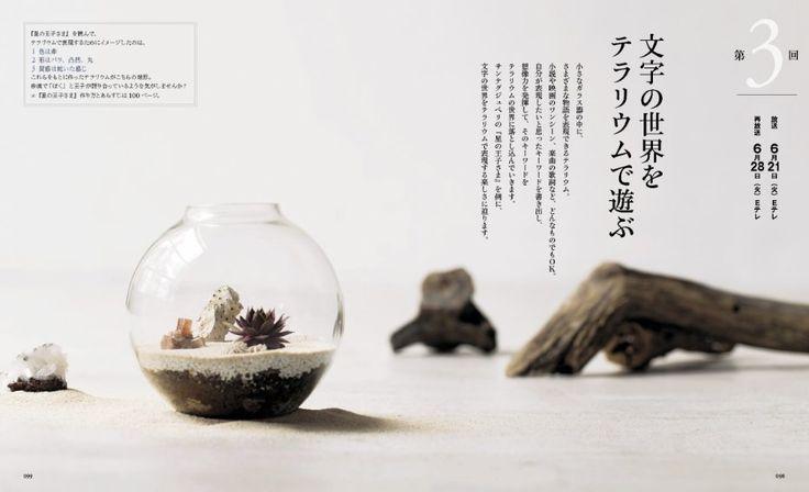"""ハイジ on Twitter: """"新放送の「アクアリウムとテラリウム」観てるのだけど、次回は「星の王子さま」の世界を表現した作品を作るそうなので楽しみ。小惑星を球体のガラスケースに見立て、珊瑚の化石等で火山や薔薇を表現。https://t.co/mMPiIGjzpa https://t.co/JeLhAAQK0J"""""""