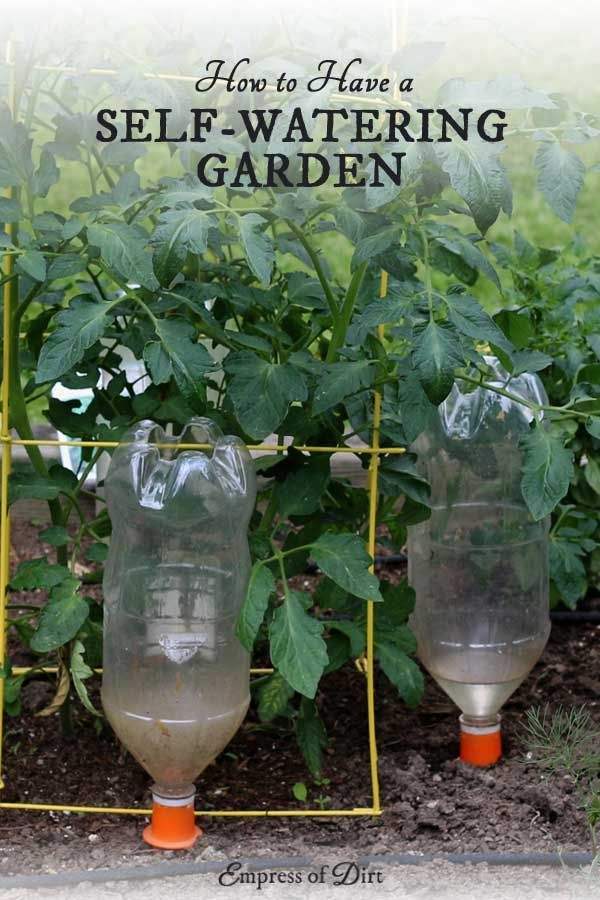 If you're going on vacation or simply do not have time to water your plants on a regular basis, you may like these self-watering garden solutions. There's watering globes, probes, spikes that fit on soda bottles, as well as self-watering containers and ir