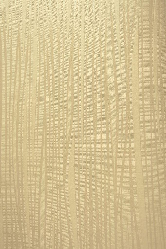 Modelo 13230 90 color caf claro crema y beige brilloso - Color beige claro ...