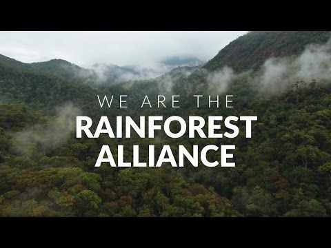 Coming soon: The Rainforest Alliance takes you on a trip around the globe to meet the people we're working with to rebalance the world. Check back soon for the full video!